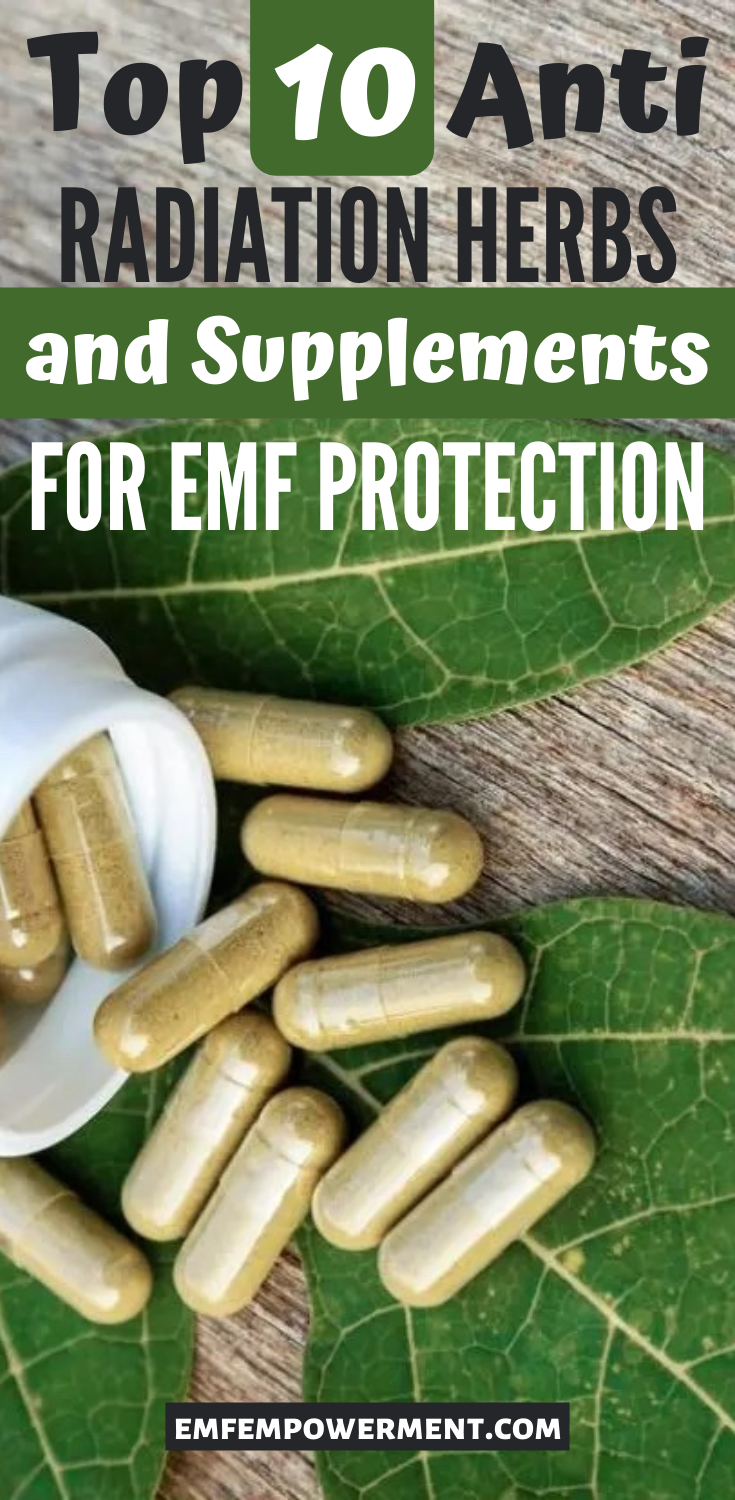 Top 10 Anti Radiation Herbs and Supplements for EMF Protection